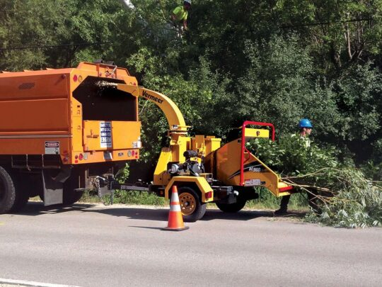 Commercial Tree Services-Golden Glades FL Tree Trimming and Stump Grinding Services-We Offer Tree Trimming Services, Tree Removal, Tree Pruning, Tree Cutting, Residential and Commercial Tree Trimming Services, Storm Damage, Emergency Tree Removal, Land Clearing, Tree Companies, Tree Care Service, Stump Grinding, and we're the Best Tree Trimming Company Near You Guaranteed!