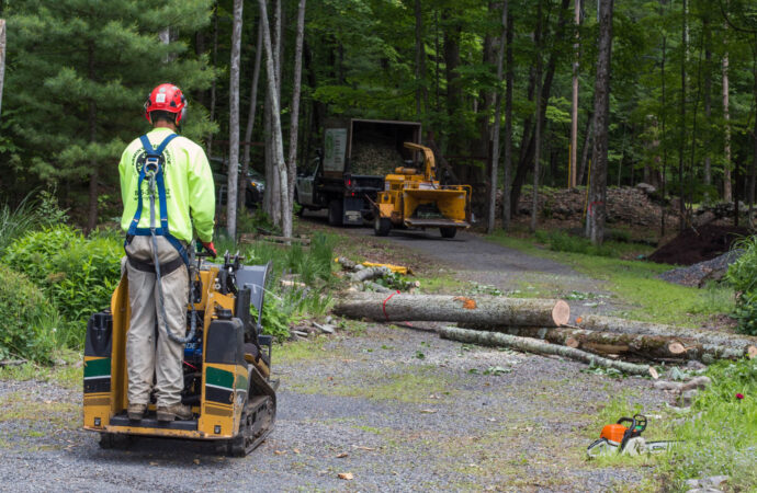 Emergency Tree Removal-Golden Glades FL Tree Trimming and Stump Grinding Services-We Offer Tree Trimming Services, Tree Removal, Tree Pruning, Tree Cutting, Residential and Commercial Tree Trimming Services, Storm Damage, Emergency Tree Removal, Land Clearing, Tree Companies, Tree Care Service, Stump Grinding, and we're the Best Tree Trimming Company Near You Guaranteed!
